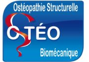 osteopathie-structurelle-biomecanique